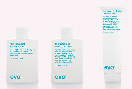 Bilderesultat for evo hair calm